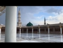 مقطع بسيط من سطح المسجد النبوي ممزوجة بتلاوةٍ آسرة للشيخ محمد أيوب رحمه الله و جمعنا به في الفردوس الأعلى بجوار النبيّ الكريم