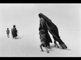 «Соль Земли» |2014| Режиссеры: Джулиано Рибейру Сальгаду, Вим Вендерс | документальный, история