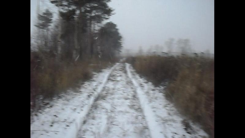 снег около пятинского шоссе Ромоданово 8 11 2011 (2)