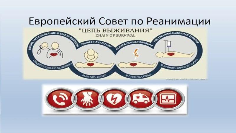 Основы первой помощи №2. Кровотечения. Транспортировка пострадавших. » Freewka.com - Смотреть онлайн в хорощем качестве