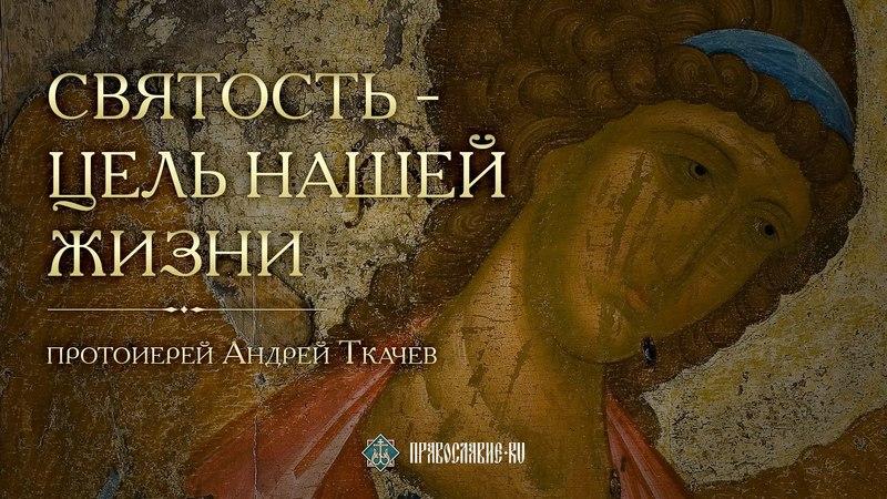 Святость цель нашей жизни Закон Божий с протоиереем Андреем Ткачевым