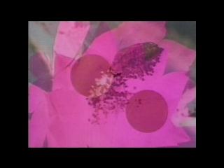 Jaydee - Plastic Dreams (1992)