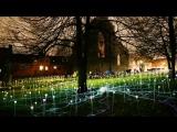 Инсталляция 'Field of Lights' в Оденсе