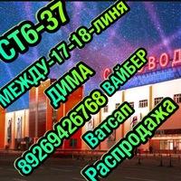 Дима Ст6-37