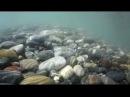 Пляж Дагомыс Худшее место в Сочи так утверждают