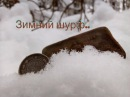 Зимний шурф 2018 ../ Поиск монет на Доме лесника.