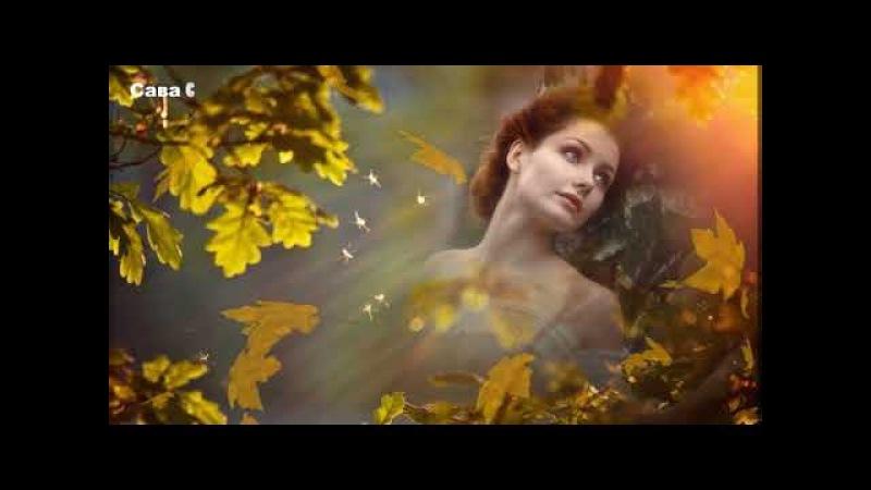 Листья желтые медлено падают Люся Калгина