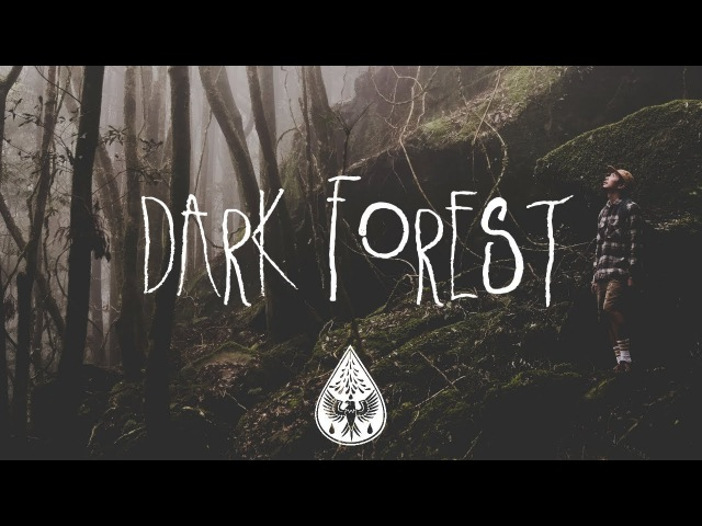 Dark Forest 🦇 - An Indie/Folk/Alternative Playlist (Halloween 2017)