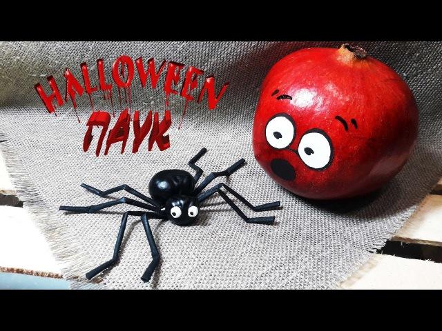 Halloween / Паук для Хэллоуина своими руками