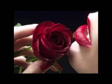 Blew My Mind - Paul Hardcastle ( feat. Becki Biggins )