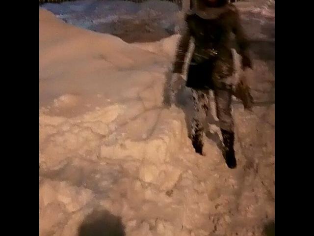 Tigra_alina video