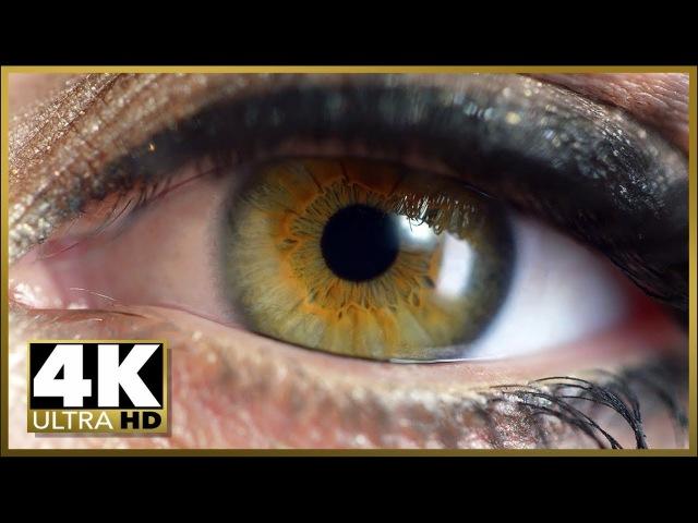 2018 Best 4K High Resolution Beautiful Phone TV VideoTest Demo - Sony, Samsung, Vizio LG