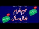 Muharram ul Haram; Fazail Masail, Molana Muhammad Ilyas Ghuman