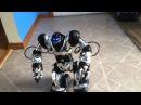 Робот Robosapien WowWee (8083)