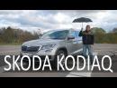 Третий ряд и смешные цены Skoda Kodiaq СТОК №52