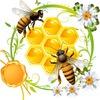 Магазин Bortnik.ru - Бортевой мед, продукты пчел