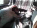 Лялечка и Муся две подружки