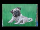 Уроки рисования! Как нарисовать мопса гуашью! #Dari_Art