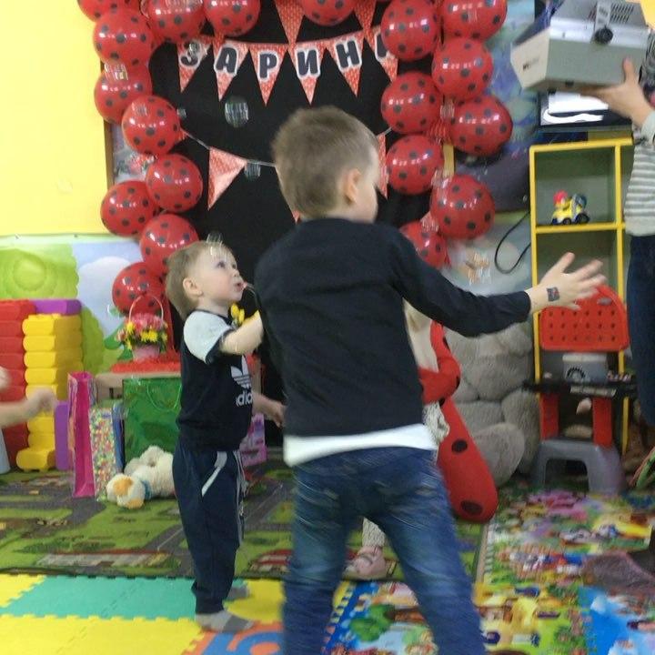 Кроха Енот | Ярославль