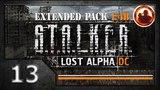 СТАЛКЕР Lost Alpha DC Extended pack 1.4b. Прохождение #13. Документы с Янтаря.