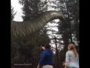 Jurassic Park: 25 years