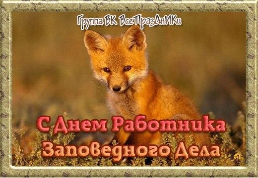 https://pp.userapi.com/c840425/v840425770/13b49/frZ1YARWX6c.jpg