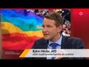 Gender-Mainstreaming Maischberger mit Björn Höcke AfD - 14.04.2015