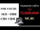 Доменное имя. Ник.ру и Самый дорогой домен