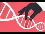 Дружественный геноцид ДНК