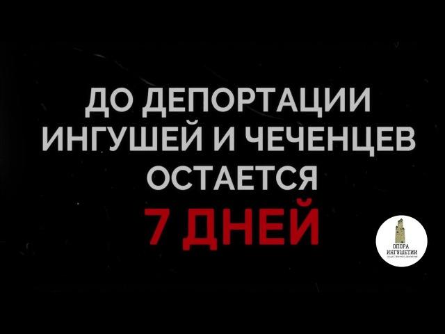 ОД Опора Ингушетии - Несломленные (7 дней до ...)
