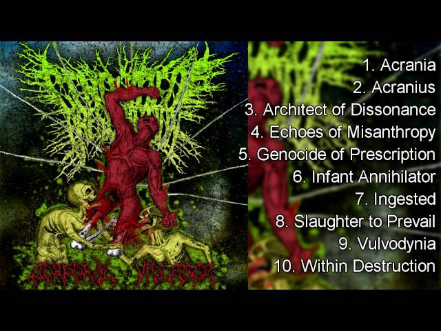 Top 10 Slam influenced Deathcore Bands - My Favorites (2016)