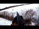 Охота на зайца - Добор дратхааром зайца-подранка / Hare hunting - Drahthaar chasing wounded hare
