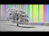 Ephemeral A Trip Hop Mix
