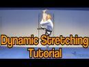 Taekwondo Kicking Dynamic Stretching Drills Get High Kicks GNT Tutorial