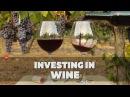 Интервью Как получить прибыль от вина
