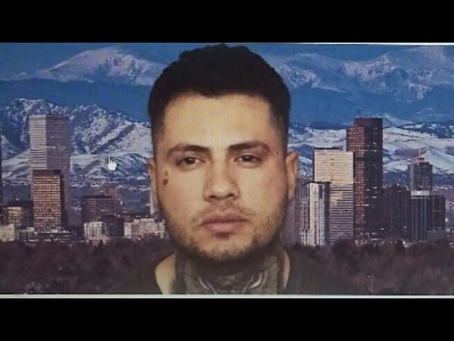 More Enrichment By A Vibrant In The Sanctuary City of Denver!