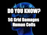 5G EMF Human Cell Damage, Hydrogen C60 Benefits, Magnetic Pole Shift Implications