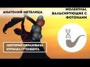 Анатолий Метелица Молекулы вальсирующие с фотонами fyfnjkbq vtntkbwf vjktreks c ajnjyfvb