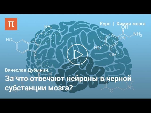 Дофамин — Вячеслав Дубынин ljafvby — dzxtckfd le,syby