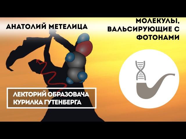 Анатолий Метелица - Молекулы, вальсирующие с фотонами fyfnjkbq vtntkbwf - vjktreks, dfkmcbhe.obt c ajnjyfvb