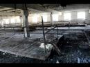 Обанкроченная ферма в Сосновке