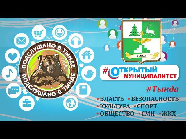Открытый муниципалитет - Отчет А.М. Шиян по культуре г.Тында 2017г.