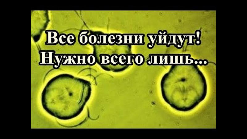 Уйдут все болезни - Попробуйте!