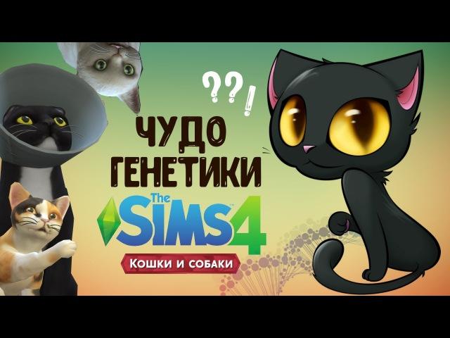 СИМС 4 КОШКИ И СОБАКИ ЧУДО ГЕНЕТИКИ | кошачья версия