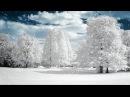 Падает снег Автор слов муз и исп Виктор Давидзон