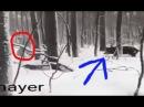 Hunter and Boar RUSSIAN JOKE ON HUNT