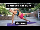 5 Minute Fat Burning Workout 123 UPPER BODY ABS