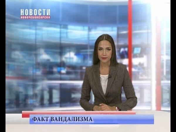 Факты вандализма в Ельниковской Роще