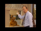 Alf Quote Season 3  Episode 23_Лампа