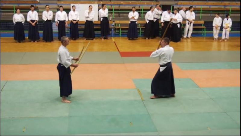Demonstration Aikibudo 2013
